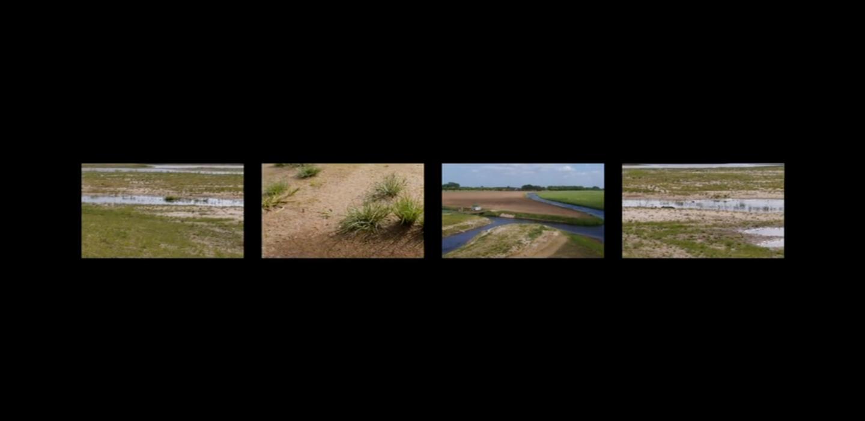 clip kijken in vimeo